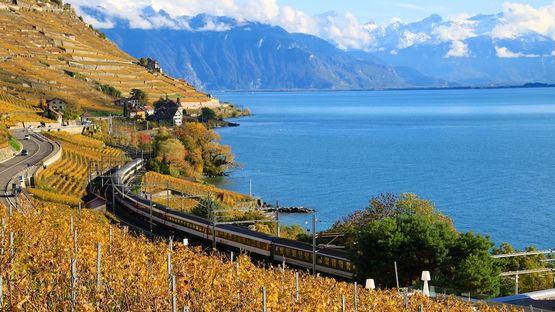 Как сэкономить на поездке в Швейцарию Отдых