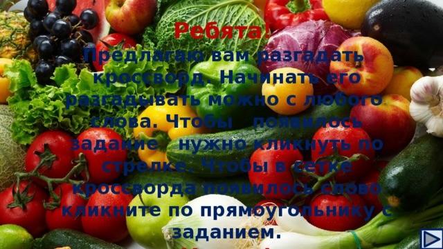 Овощи – источник здоровья Полезные продукты и рецепты