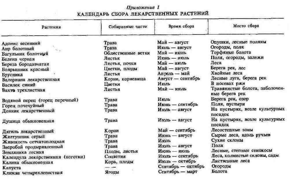 Календарь сбора лекарственных растений Здоровье