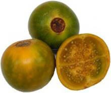 Наранхилла (луло, золотой плод Анд) Комнатные растения и цветы